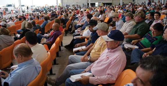 Crowd of equipment buyers on auction-day