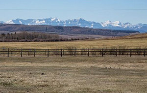 LC Ranching - AB/Foothills County