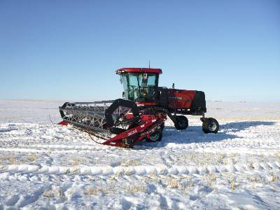 2005 CASE IH WDX1202 36 Ft Swather